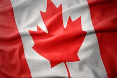 Waving colorful flag of canada. Stock Photos