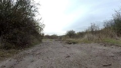Movement about dirt road . Animal view Stock Footage
