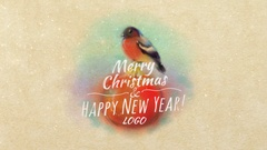 Christmas Card With Bullfinch Stock After Effects