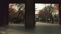 Yasukuni shrine in Japan Stock Footage