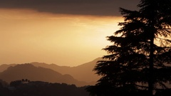 WS Silhouette of tree at sunset in foothills of Himalayan Mountains / India Stock Footage