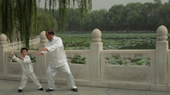 WS Grandfather and grandson doing Tai Chi in a park by lake /Beijing, China Stock Footage