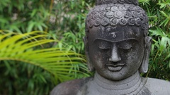 CU Statue of Buddhas face surrounded by plants Stock Footage