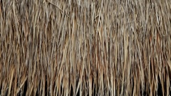CU Thatch on roof of hut / Indonesia Stock Footage