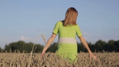 Young woman touching wheat spikes on wheat field. Stock Footage