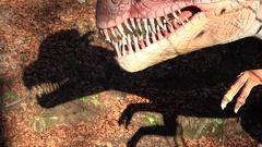 Scary dinosaur silhouette shadow Stock Footage