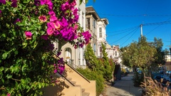 San Francisco. Colorful flower. American houses. Timelapse. America. USA. Califo Stock Footage