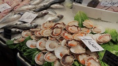 MH TU Seafood Displayed in Market / Venice, Italy Stock Footage
