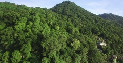 Aerial summiting lush green mountain in Dominica Stock Footage