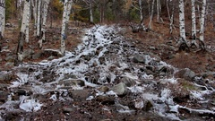 Mountain stream in winter forest Stock Footage