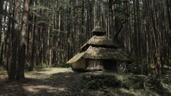 WS Old hindu temple surrounded by trees in Himalayan mountains / India Stock Footage