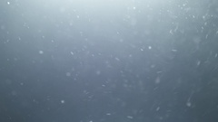 Real backlit dust particles with light at the top floating in slow motion Stock Footage