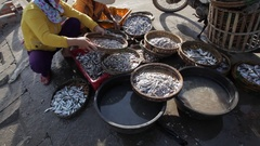 WS Woman Selling Fish by Side of Road / Hoi An, Vietnam Stock Footage