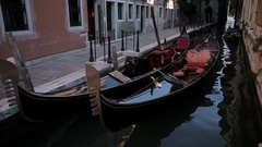 WS LD Gondolas Moored in Canal / Venice, Italy Stock Footage