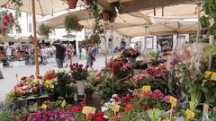 Campo de' Fiori, Piazza Campo de' Fiori, Rome, Metropolitan City of Rome, Lazio, Stock Footage