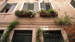 MH TD House with Flower Boxes in front of Windows / Venice, Italy Stock Footage