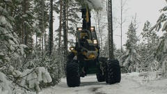 The harvester cutting trees Stock Footage