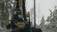 The tractor cutting trees working in a forest Stock Footage