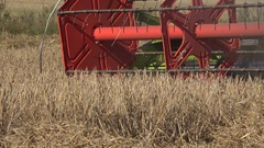 Harvester combine work in cereal crop field at summertime. 4K Stock Footage