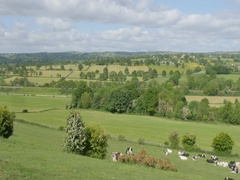View over Derbyshire Dales near Higham, Chesterfield, Derbyshire, England, UK, Stock Footage