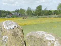 Countryside near Crich, Derbyshire Dales, Derbyshire, England, UK, Europe Stock Footage