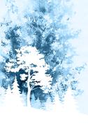 Landscape, Pine and Fir Trees Stock Illustration