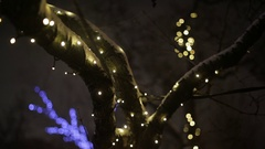 Trees decorated for the Christmas celebration Stock Footage