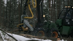 The harvester in a forest cutting tree on pieces Stock Footage