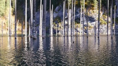 Kaindy Lake Flooded Forest Autumn Reflection Mountains 4K Stock Footage