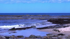 Wonthaggi Beach, Australia: Rock Pool by the Beach, Seagulls Flying Stock Footage