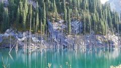 Kaindy Lake Flooded Forest Autumn Ecology 4K Stock Footage