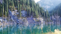 Kaindy Lake Flooded Forest Fall Mountains 4K Stock Footage
