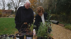 Retired Couple Picking Out A Plant For Their Garden 4K Stock Footage