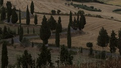 WS HA Rural road with cypress trees / Tuscany, Italy Stock Footage