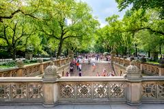 View of the Central Park Mall from Bethesda Terrace in New York Stock Photos