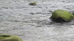 River Current and Green Rocks Pan Right Stock Footage