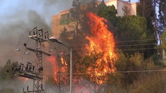 Trees catch fire near houses and residential urban buildings. Stock Footage