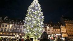People enjoying Christmas tilt-up to Christmas Tree majestic Stock Footage
