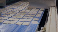 Cookies, biscuits on conveyor. Mechanized production of bakery products Stock Footage