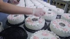 Pastry Chef Decorate Cakes with chocolate, cream and sugar on a cake production Stock Footage