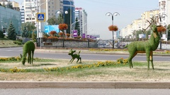 Deer Family Almaty Downtown 4K Stock Footage