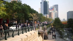 Street with trees, walking people and cars near Han river. Stock Footage