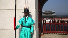 Man from guard of honor in dress with spear near gate to palace Stock Footage