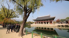 Panorama pagoda on lake and photograph tourist on brink Stock Footage