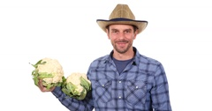 Confident Farmer Man Looking Camera Showing Delicious Vegan White Cauliflower Stock Footage