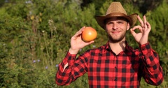 Smiling Peasant Man Holding Bio Grapefruit and Showing OK Sign in Citrus Orchard Stock Footage