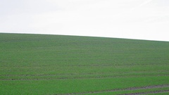 Empty green grassy hill field, serene calm nature, Germany Stock Footage