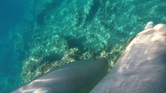 Man Swim and Explore in Turquoise Water Free Snorkeling Point of View Feet POV Stock Footage