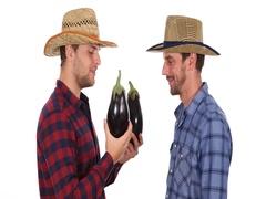 Optimistic Handsome Farmer Men Holding Eggplants Talking Teamwork and Handshake Stock Footage