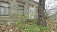 Old house with dirty windows on street among trees 4k Stock Footage